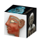 Pharaohs Art Cube Puzzle Gift Box!